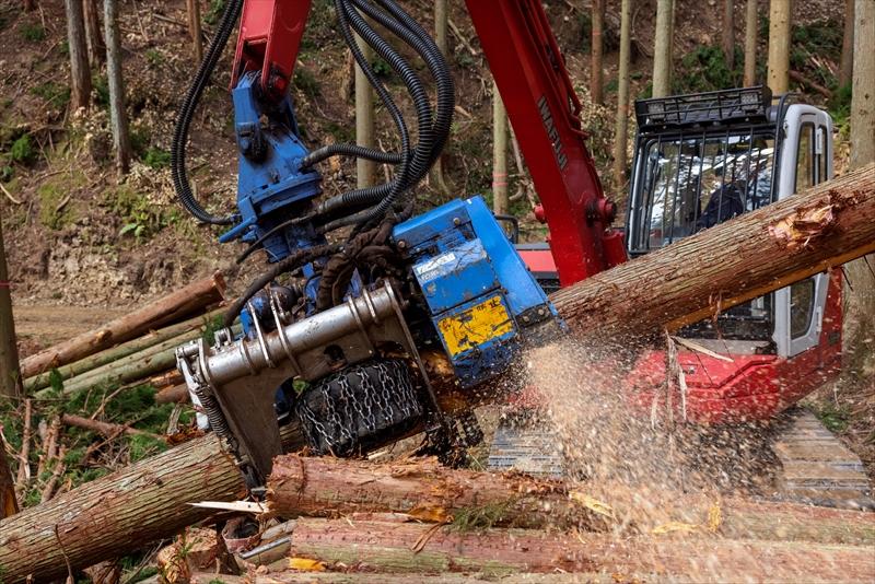 立木伐採・搬出作業・作業道開設・森林整備・原木輸出等の林業!