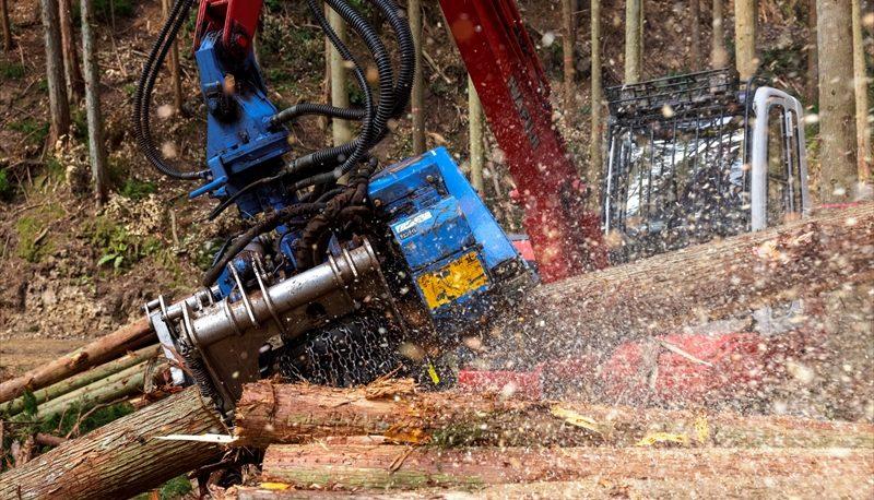 立木伐採、搬出作業、運搬作業、作業道開設、森林整備、原木輸出業
