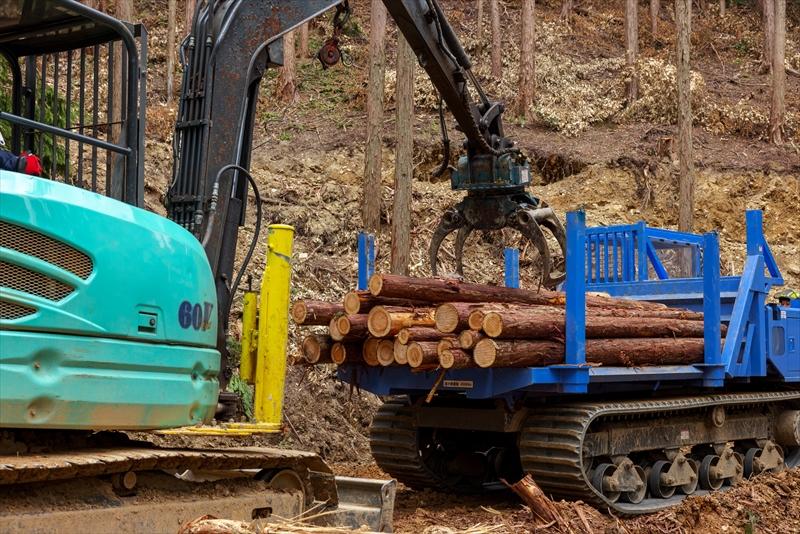 立木伐採・搬出等の仕事が中心!